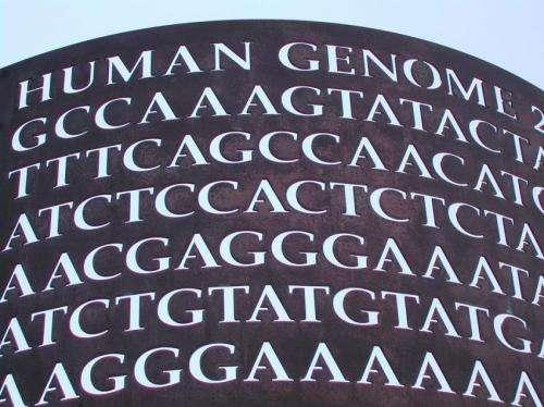Beyond genetics: Illuminating the epigenome