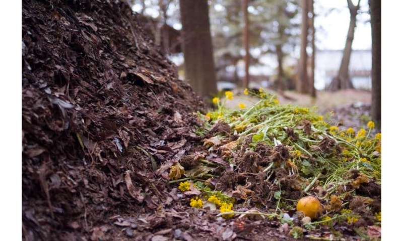 Composting program cuts emissions equivalent to 7000 cars