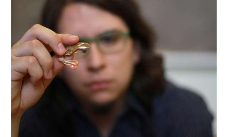 Creature's 'dactyl club' filters shear waves to resist damage