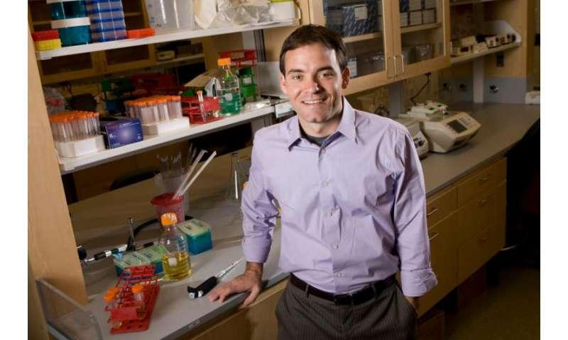 CRISPR treats genetic disorder in adult mammal
