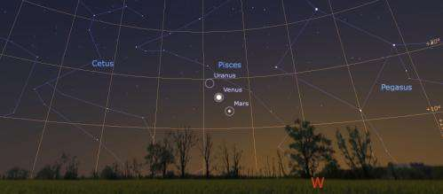 Dance of the planets in the evening sky