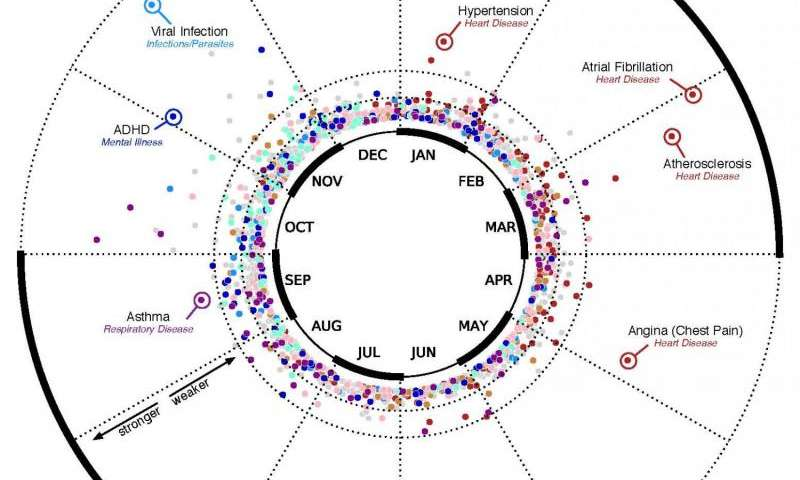 Data scientists find connections between birth month and health