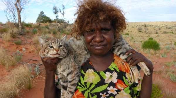 Desert cat hunters cut wildlife protection costs