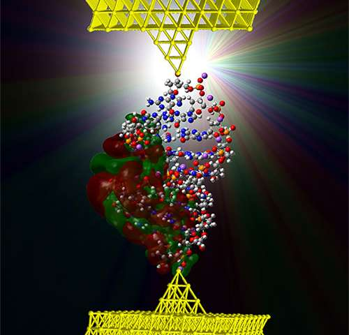 DNA-based electromechanical switch demonstrated