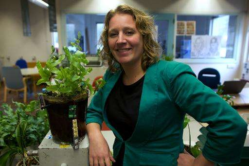 Dutch scientist Marjolein Helder, co-founder of Plant-e, which makes products that harvest energy from living plants, poses for