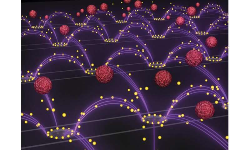 Electric fields remove nanoparticles from blood with ease