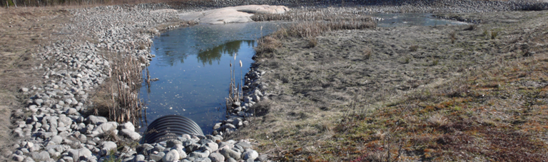 Engineered infiltration systems for urban stormwater quality and quantity