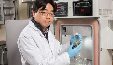 Engineer pursues biological solar power