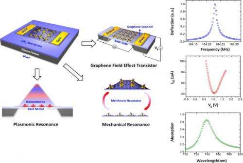 Engineers develop graphene-based biosensor that works in three ways at once