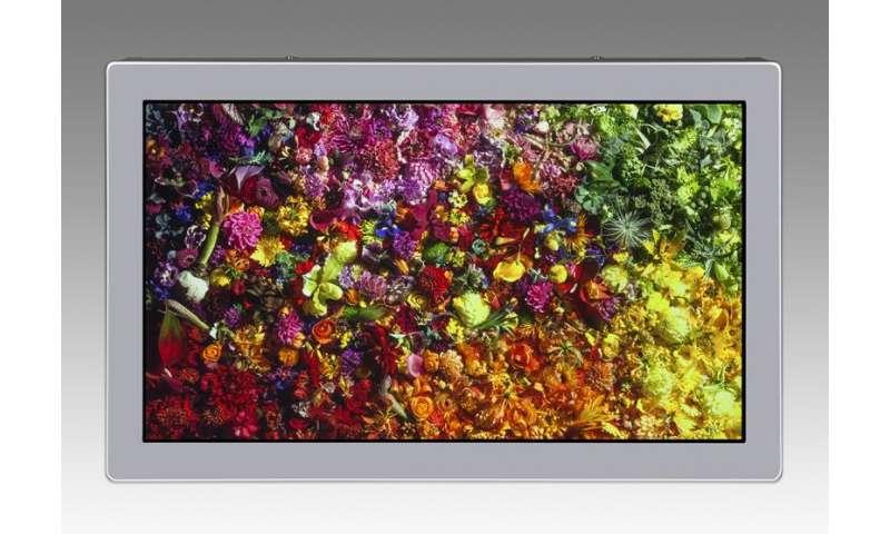 En route to CEATEC: 17.3-inch 8K4K LCD module