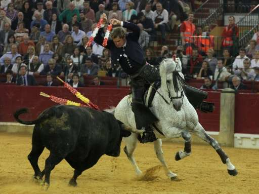 EU lawmakers have demanded an end to subsidies for farmers raising bulls destined for fights like this one featuring Spain's Fer