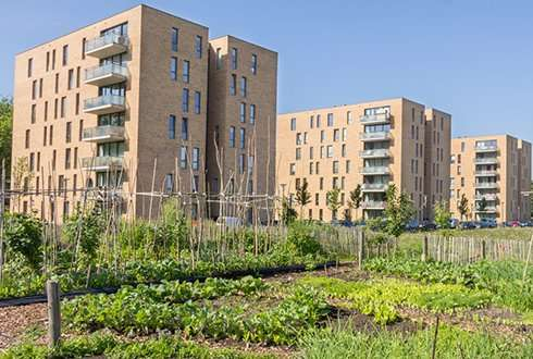 Five business models for urban farming