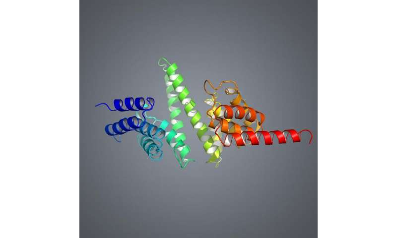 'Freezing a bullet' to find clues to ribosome assembly process