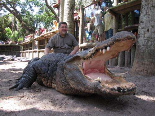 Gator blood contains naturally strong germ fighters, new GMU research finds