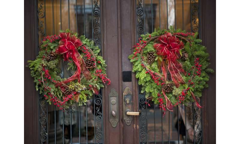 Good mental health during the holidays means slower pace, lower expectations and forgiveness