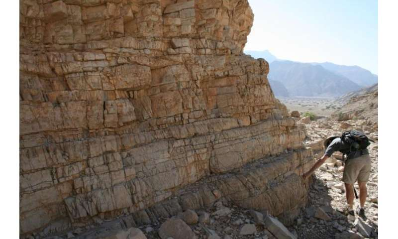 Greatest mass extinction driven by acidic oceans, study finds