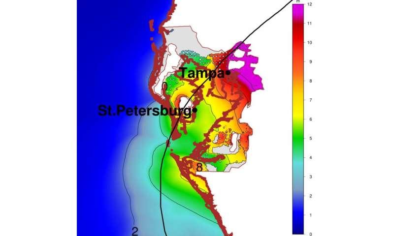 Grey Swans: Rare but predictable storms could pose big hazards