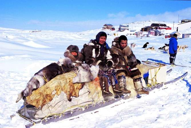 High-fat diet made Inuits healthier but shorter thanks to gene mutations, study finds