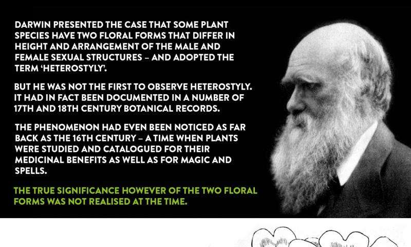 10.2 notes - 10.2 Darwins Observations KEY CONCEPT Darwins ...