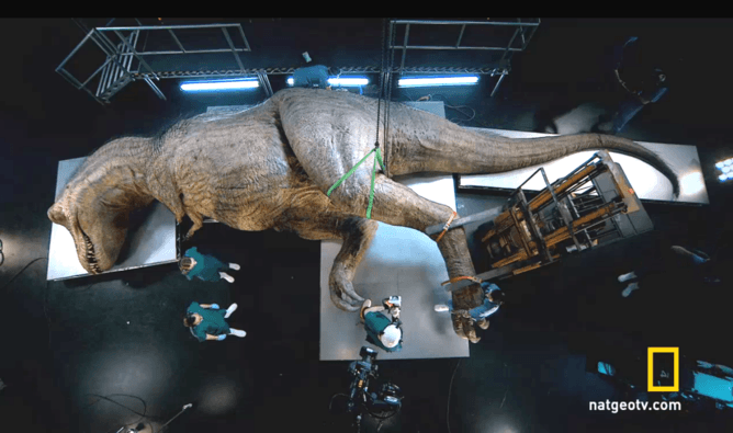 How I Dissected A T Rex It Took Chainsaws Feathers And Lots Of Latex