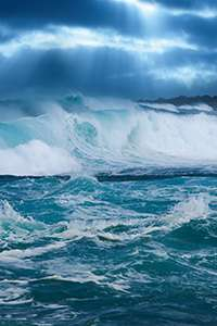 How sea spray particles evolve in the atmosphere