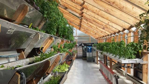 how sustainable is vertical farming. Black Bedroom Furniture Sets. Home Design Ideas