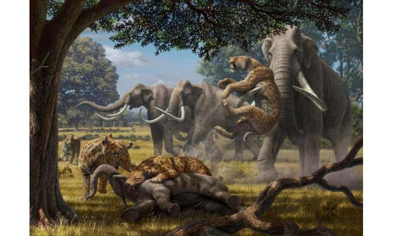 'Hypercarnivores' kept massive ancient herbivores in check