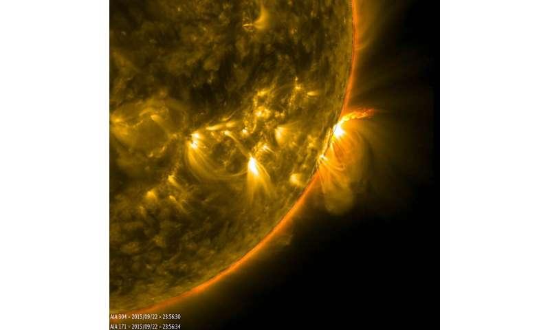 Image: SDO views active region loops