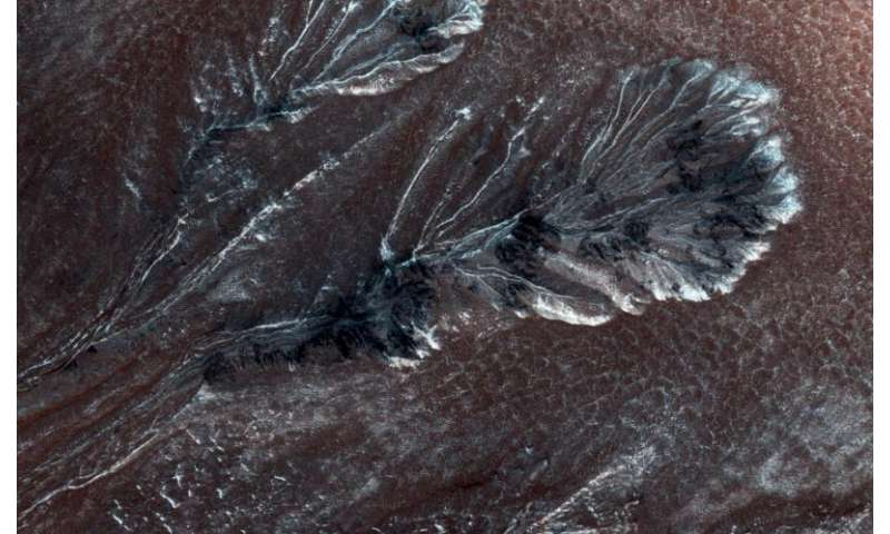 Imge: Frosty gullies on the northern plains of Mars