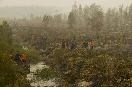 Indonesia, one of the world's biggest greenhouse gas emitters, said it would reduce deforestation, restore degraded forests, and