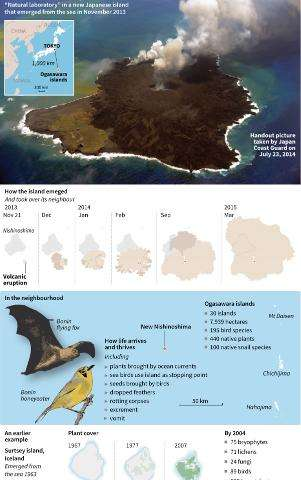Japan's new Nishinoshima island, which emerged from a volcanic eruption in November 2013