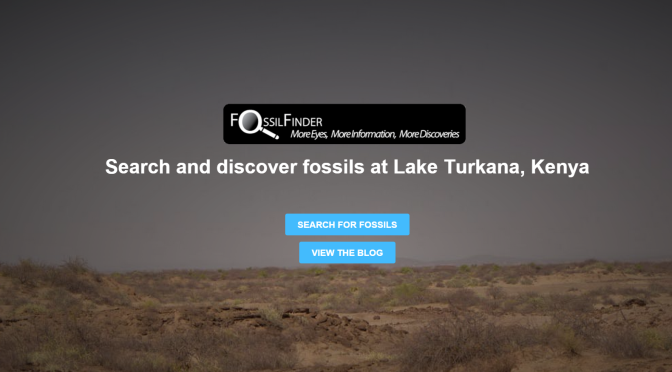 Kites, drones, armchair finders in Turkana Basin fossil search