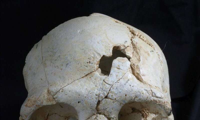 Lethal wounds on skull may indicate 430,000-year-old murder