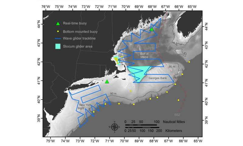 Listening for whales and fish in the Northwest Atlantic ocean