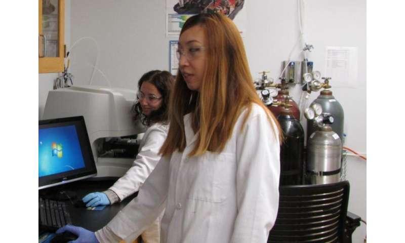 Liz Pillar and Evie Zhou studying heterogeneous processes