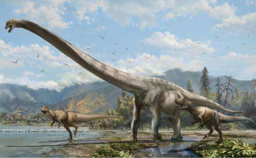Long-necked 'dragon' discovered in China