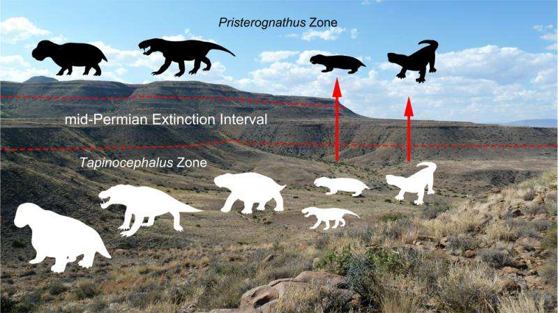 Mass extinction event from South Africa's Karoo