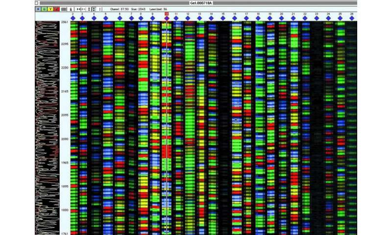 'Measuring stick' standard for gene sequencing now available from NIST