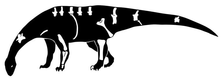 Meet Pulanesaura eocollum, a new species of dinosaur
