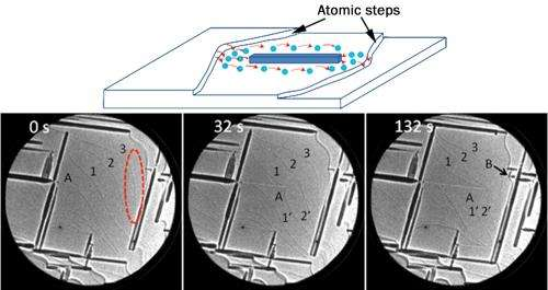 Metal oxidation controlled by atomic surface steps