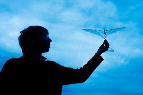 Morphing wings help drones manage collisions