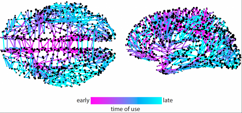 Network model for tracking Twitter memes sheds light on information spreading in the brain