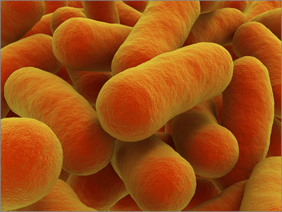 New biosensors for managing microbial 'workers'