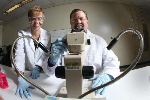 New class of insecticides offers safer, more targeted mosquito control