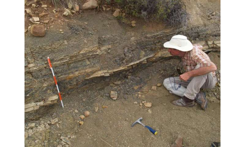 New findings rock long-held assumptions about ancient mass extinction