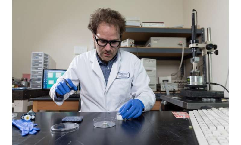 Non-aqueous solvent supports DNA nanotechnology