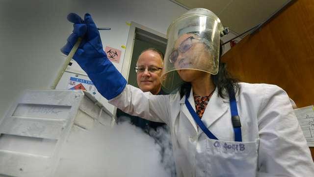 Novel peptide enhances natural mechanism to protect brain cells following cardiac arrest