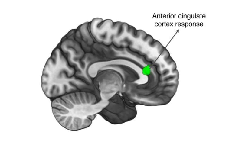 Our brain's response to others' good news depends on empathy