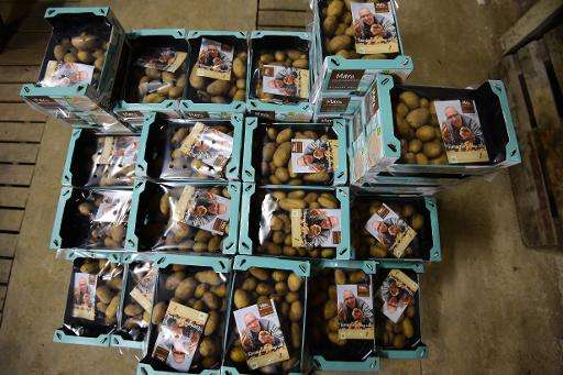 Packaged pototoes at the Salty Potato Farm
