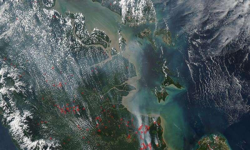 Peat fires in Sumatra strengthen in El Nino years